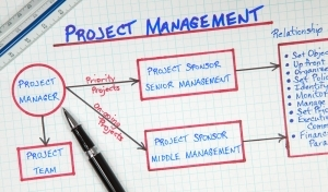 Program & Project Management